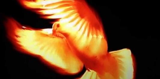 Fire by Bonaventure