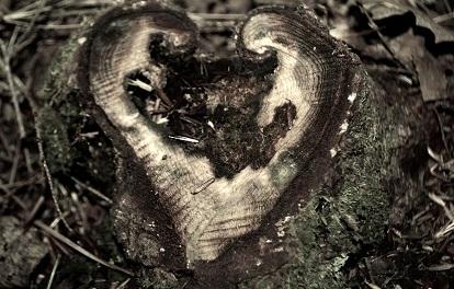 Psalm 42 — The Torn Soul Edward Feld