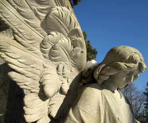Stone Angels by Keith Waldrop