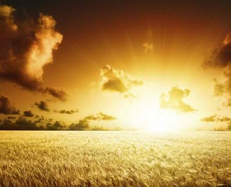 EVELYN UNDERHILL THROUGH LENT: The Kingdom