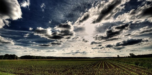 grey clouds gilbert of hoyland