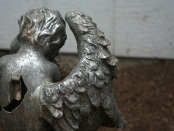 The Angel With The Broken Wing by Dana Gioia