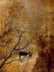 Deer Crossing the Sea by Larissa Szporluk
