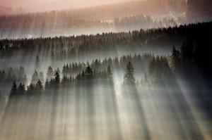light-of-heaven