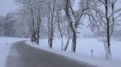 snow lightly falling