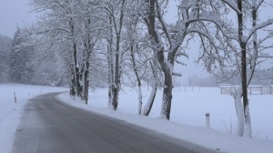 snow-lightly-falling