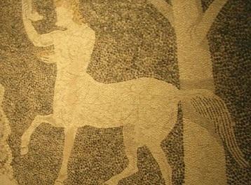 the centaur may swenson