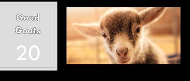 We Are All Good Goats by Dennis Linn, Sheila Fabricant Linn, and Matthew Linn