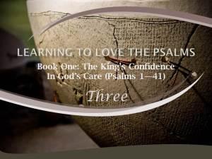 Psalm 8 by W. Robert Godfrey