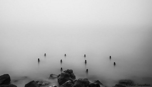 POETRY: Immersion by Denise Levertov