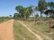 Ciudad del Este, Paraguay—Being Open by Albert Holtz
