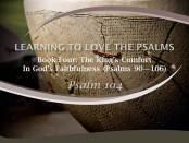Psalm 104 by W. Robert Godfrey