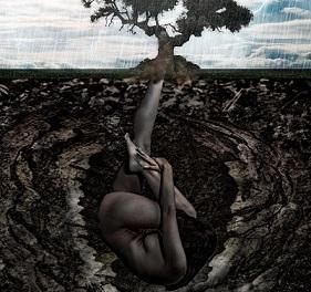 We're Dirt by Diana Butler Bass