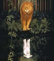 Including The Animal Kingdom! by John Eldredge