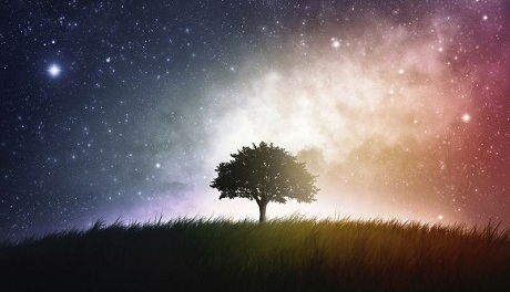 Consider The Stars by Diana Butler Bass