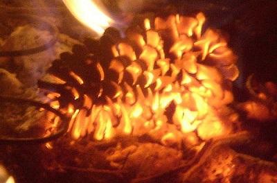 The Refiner's Fire by Enuma Okoro