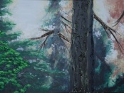 Freeman Creek Grove by Paul Willis