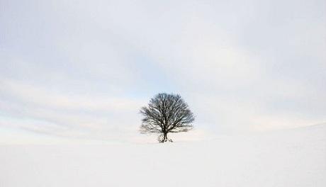 Advent Day 14 Personal Reflection by Enuma Okoro